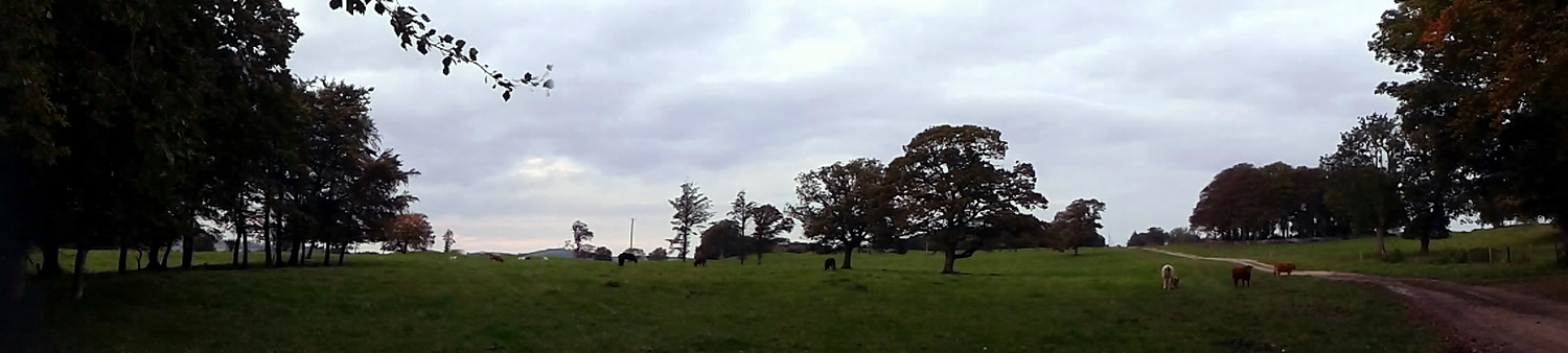 Oldcourt Carney panorama