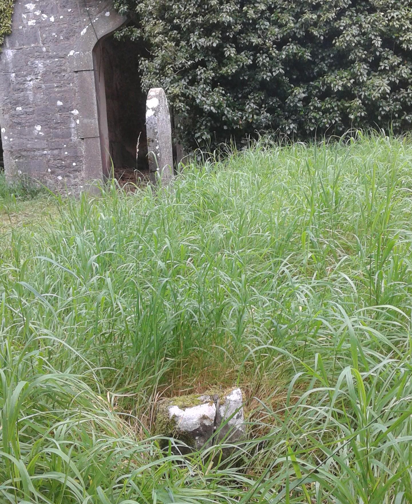 Toe Stone Finnoe Graveyard